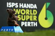 Inside the World Super 6 Perth