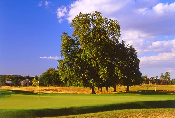 The Grove | Golf Course in RICKMANSWORTH | Golf Course