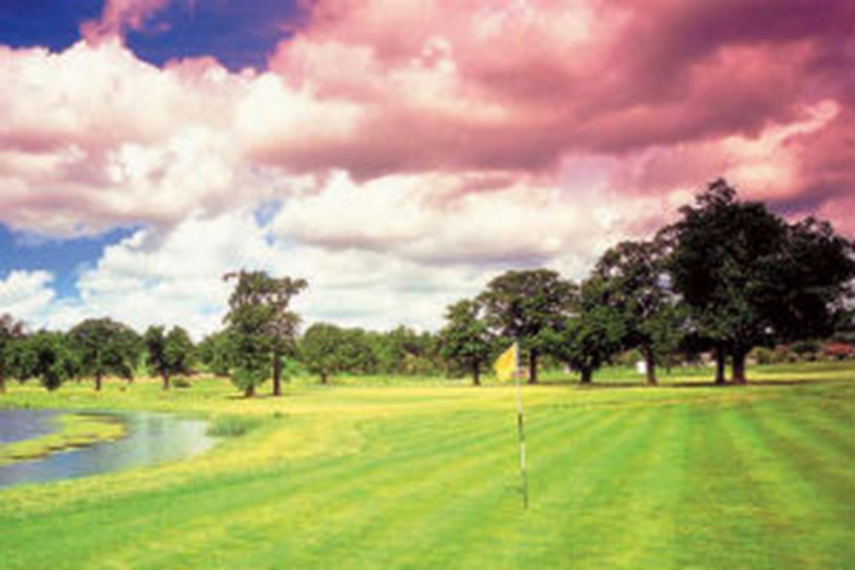 Reigate Hill Golf Club Shoes